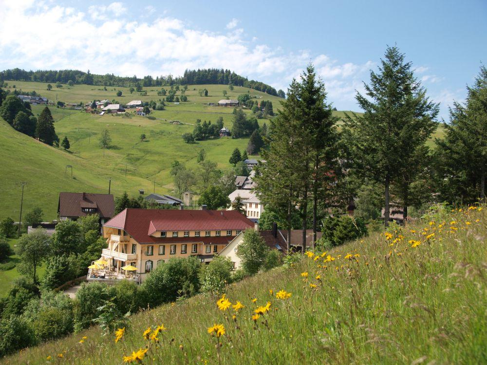 Wellnesshotel Reppert Hinterzarten im Schwarzwald